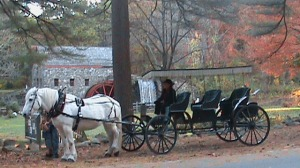 Horse & Carriage at the Grist Mill
